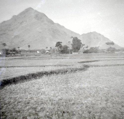 Arunachala in Black & White